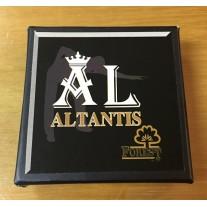 Altantis FOREST Cue Tip